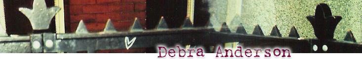Debra Anderson Fence Header