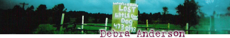 Debra Anderson Sign Header