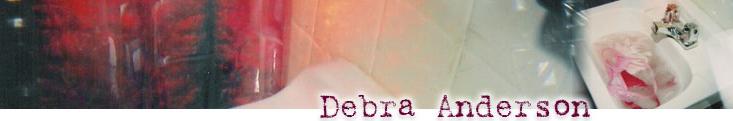Debra Anderson Sink Header